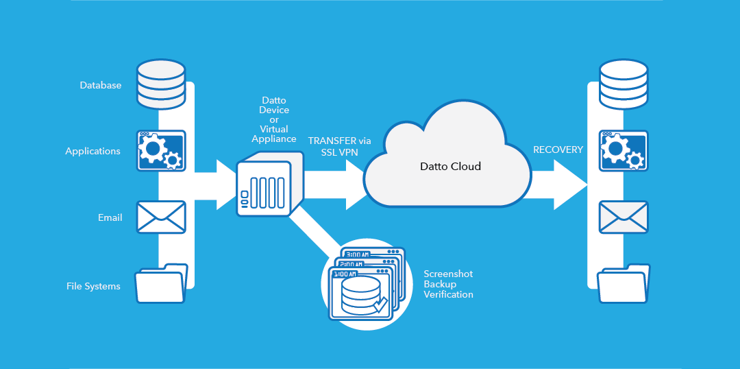 Datto Hybrid Cloud Backup Overview Infographic